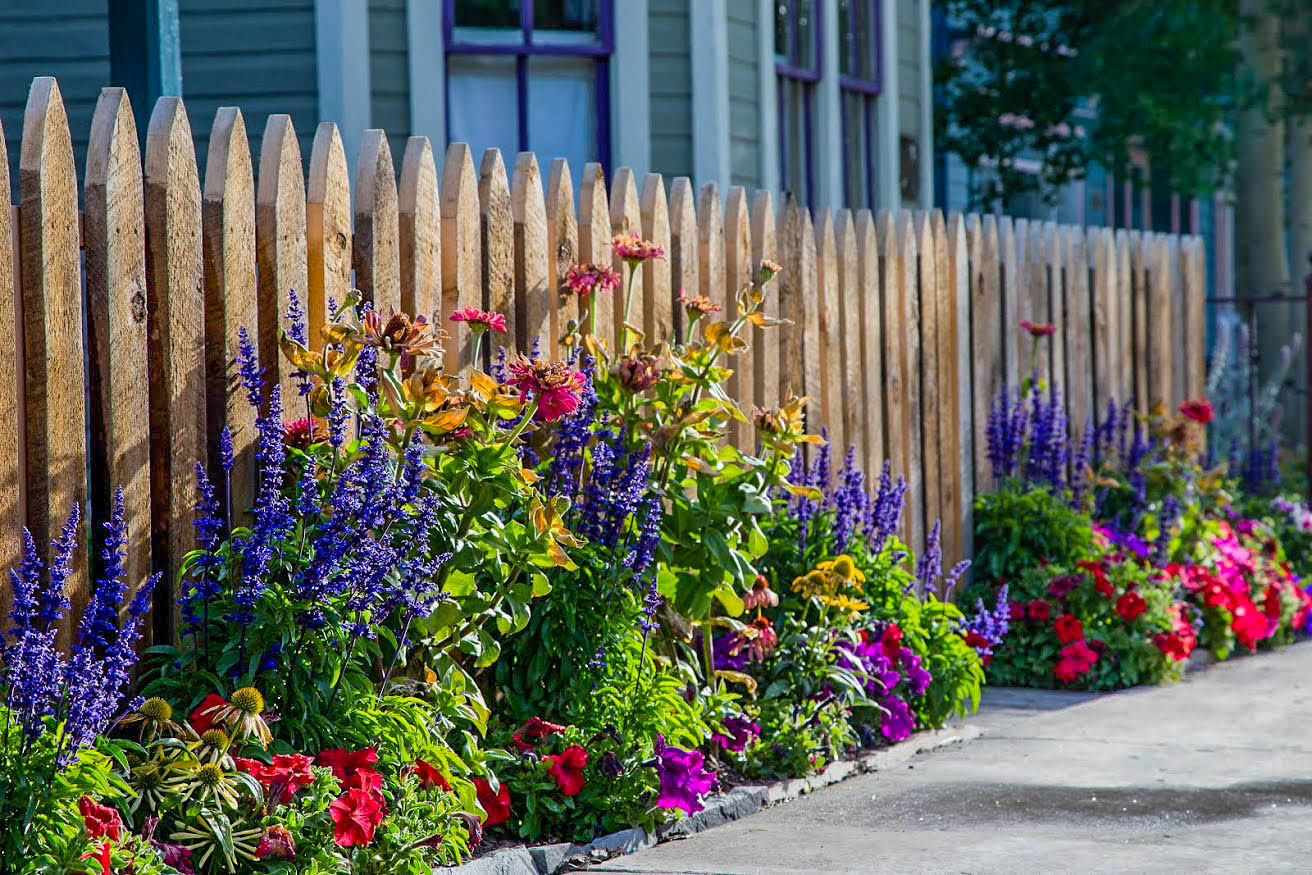 Crested butte wildflower landscapes crested butte 39 s best for Flower garden landscape