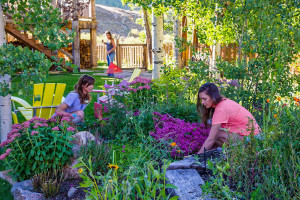 Crested-Butte-Landscaping---flower-garden