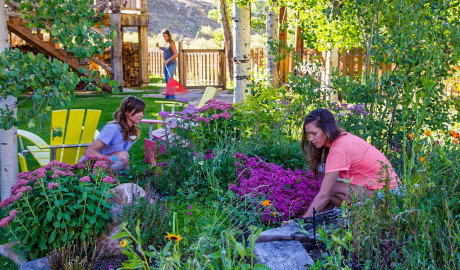 Crested Butte Landscaping Flower-gardens