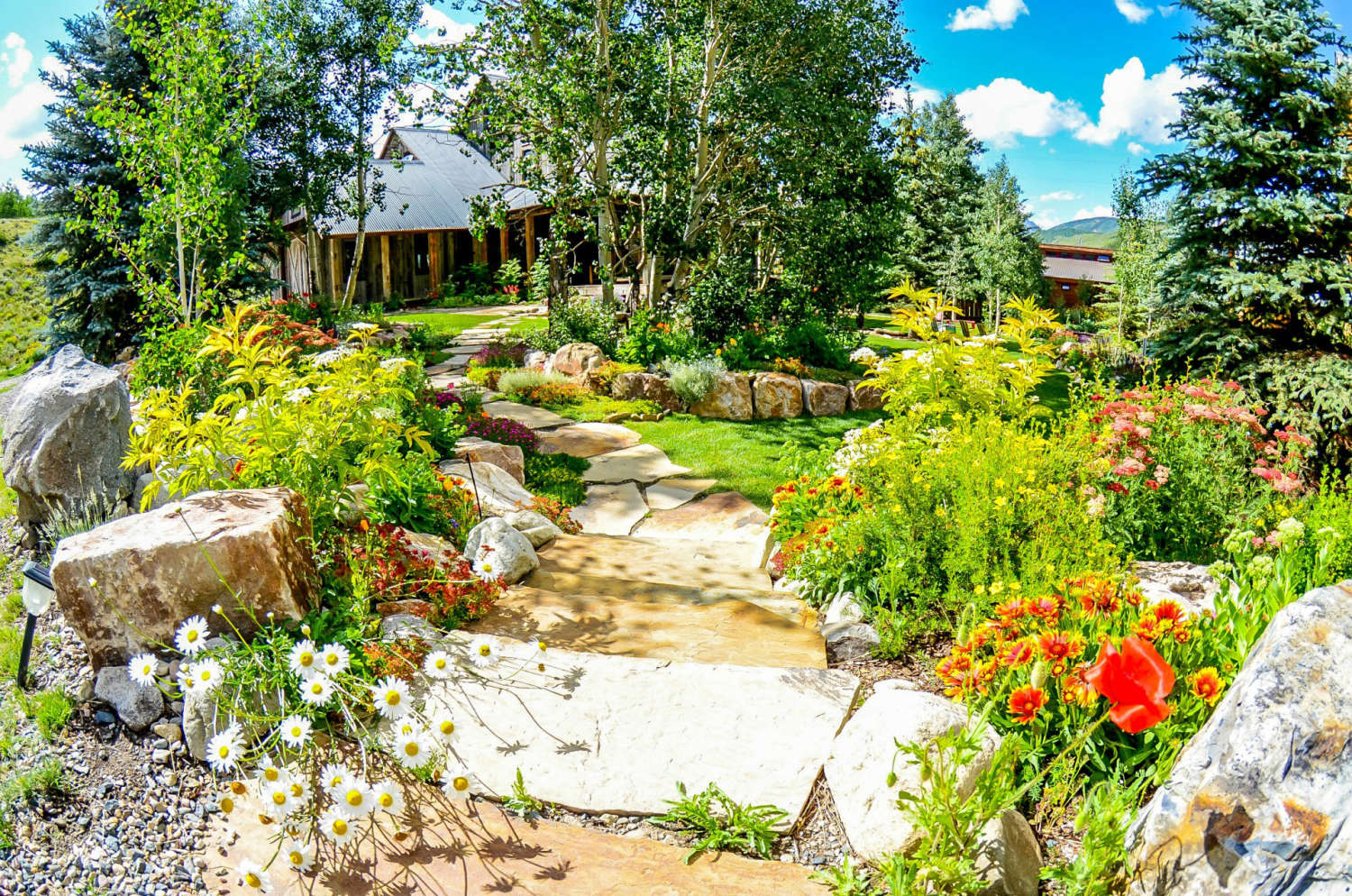 Crested butte 39 s best landscaping crested butte 39 s best for Green landscape design